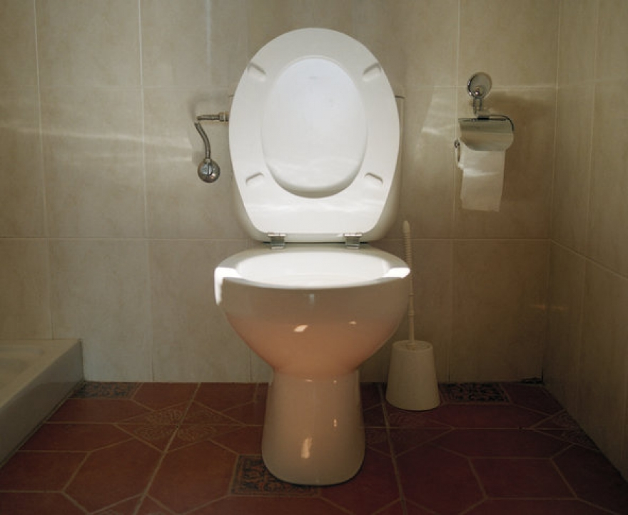 Plumbing: Is it Time to Update The Toilet Seat?