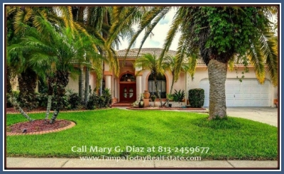 Repriced Tampa FL Landscaped Home for Sale with a Pool in Village Wood | 12905 Cinnimon Pl