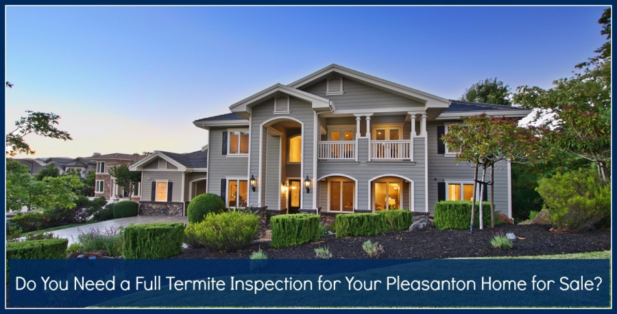 Do You Need a Full Termite Inspection for Your Pleasanton Home for Sale?
