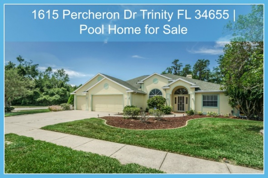 1615 Percheron Dr Trinity FL 34655 | Pool Home for Sale