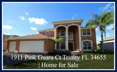 1911 Pink Guara Ct Trinity FL Home for Sale