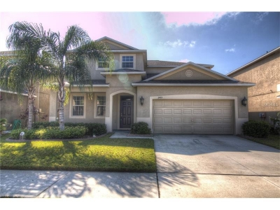 2415 Roanoke Springs Drive Ruskin Florida