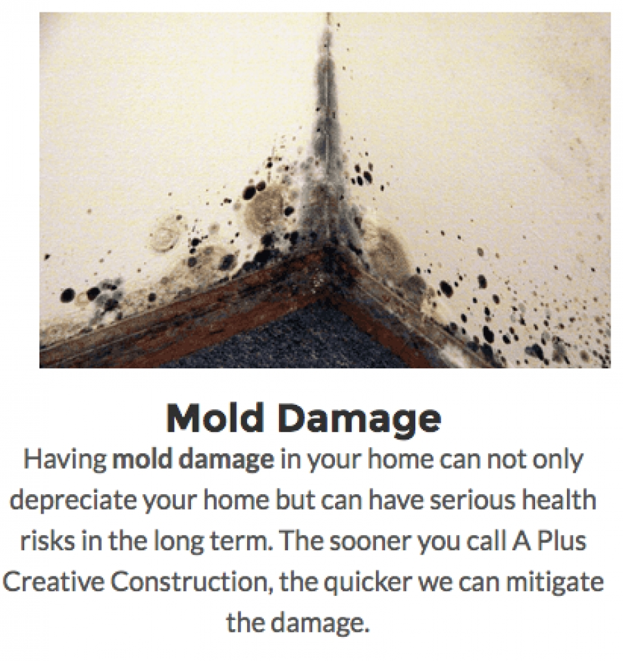 Preventative Mold Cleaning Services For Your Home