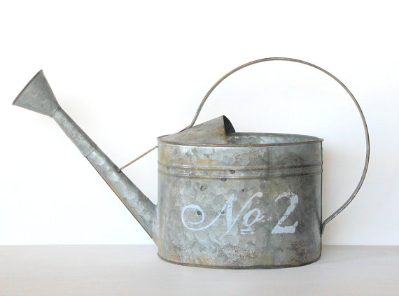 realtytimes watering can