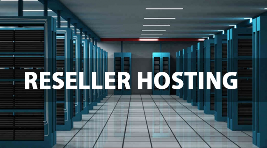 Reseller hosting and it's business