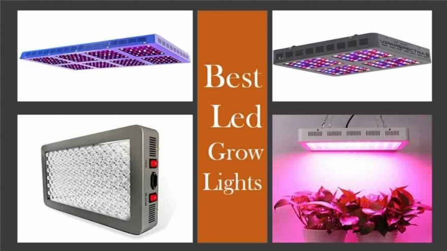 Best LED Grow Lights Under $100: The Phlizon 600W Top LED Grow Light