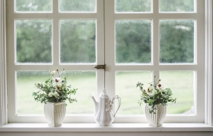 Do Energy-Efficient Windows Really Save You Money?
