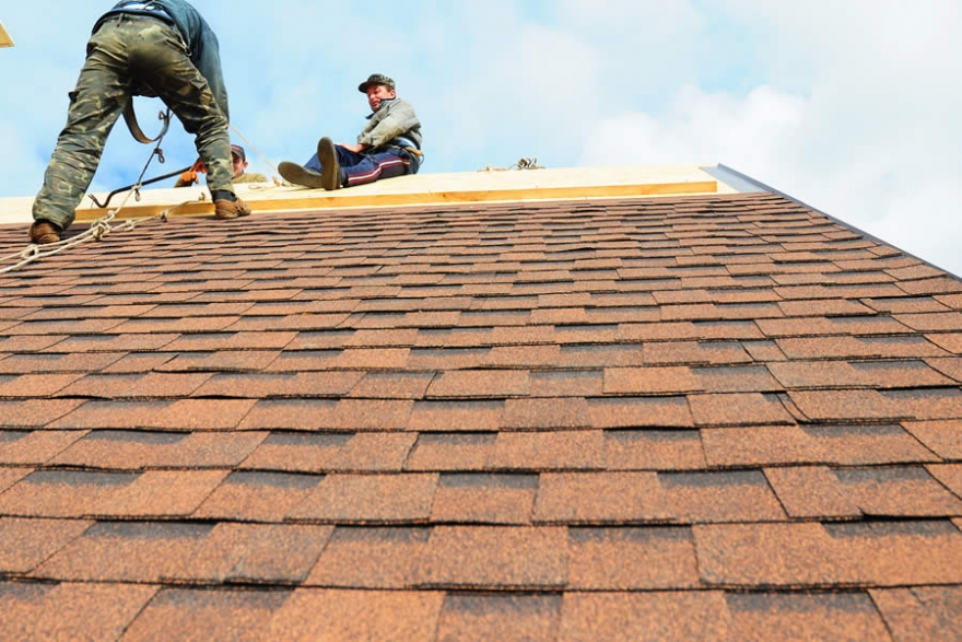 Everything You Need to Know About Roofers