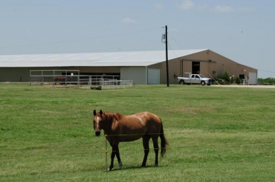 If Horses Could Talk...they'd have plenty to say about this equestrian property for sale!