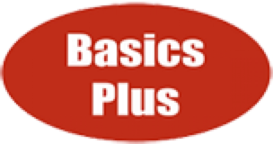 What Are The Services Offered By the Basics Plus?