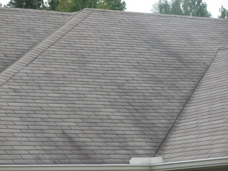 Prevent and clean black streaking on roofs
