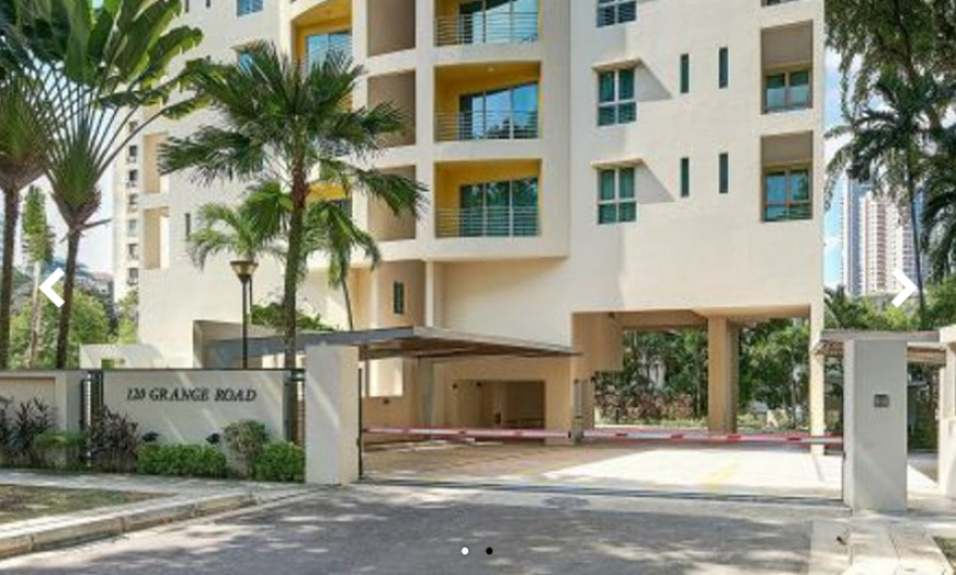 For Sale Condo - 2 BR Dual Key, 667 sqft -120 Grange (D10)