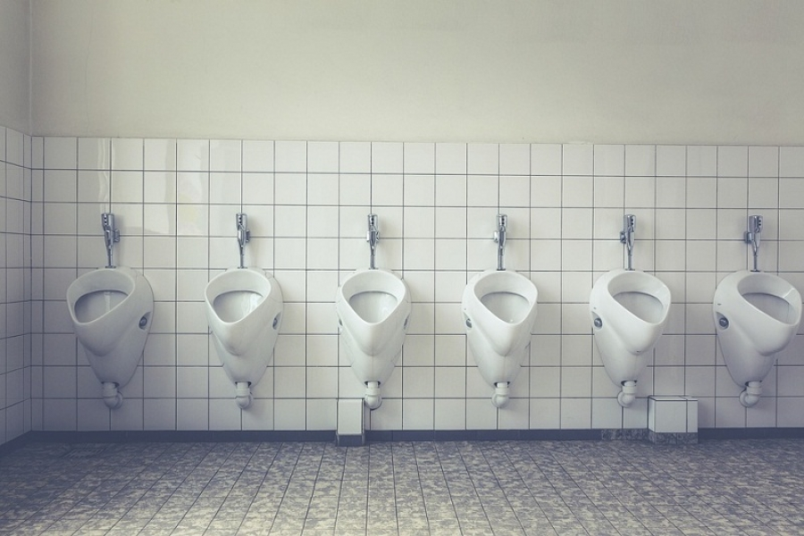 Basic Information about Toilets Clogs and How to How to Fix It