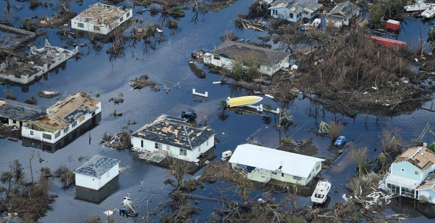 Does the Florida Homeowner's Policy Cover the Hurricane Damages?