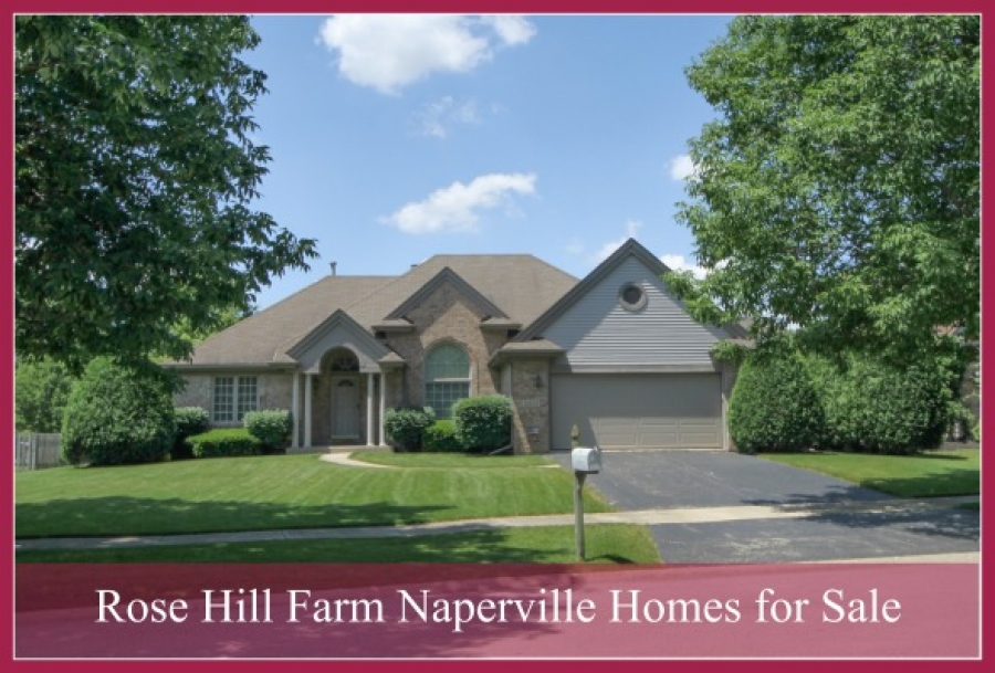 Rose Hill Farm Naperville Homes for Sale