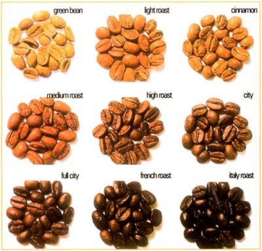 Types of Coffee Beans