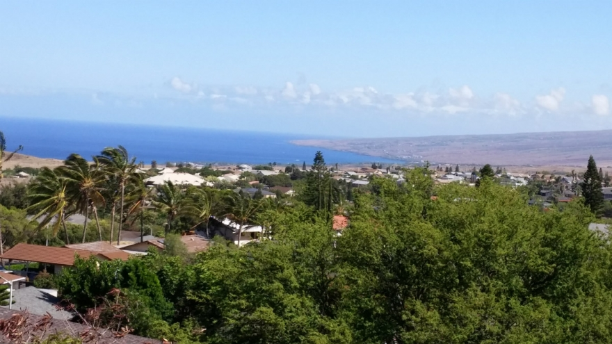 Waikoloa Village Real Estate Market Update for Q2 2017