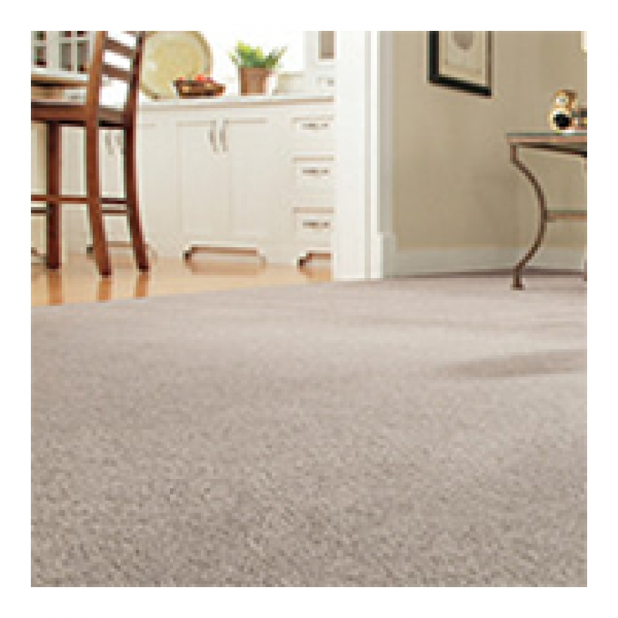 Understand the Benefits of Carpet Cleaning