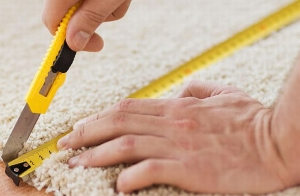 Don't Recarpet Your Home Before Reading This