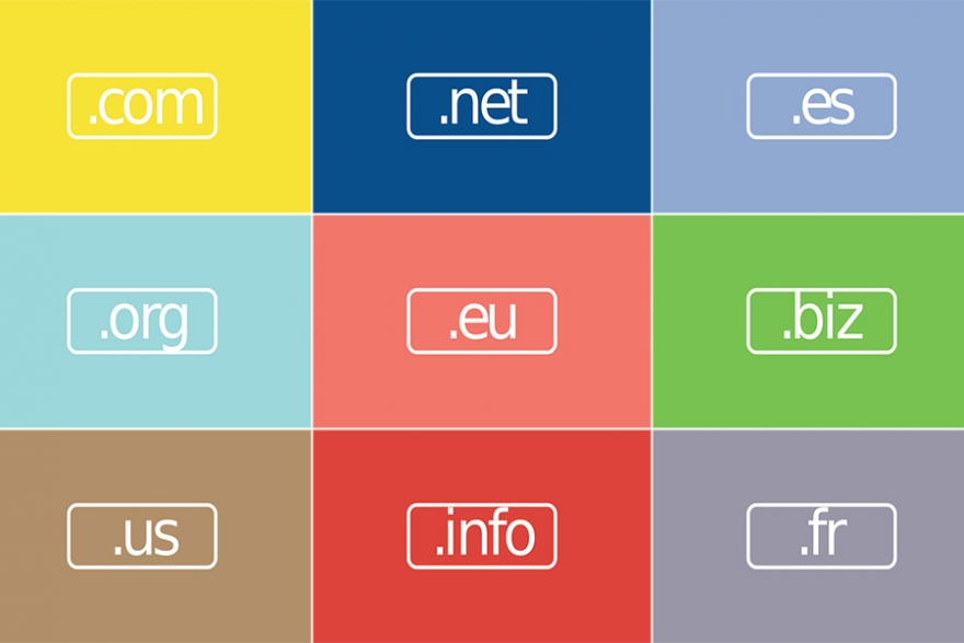 "A Brief History of ""Domain Names"" as the Evolution and Acceptance of ""Not Coms"" Continues"