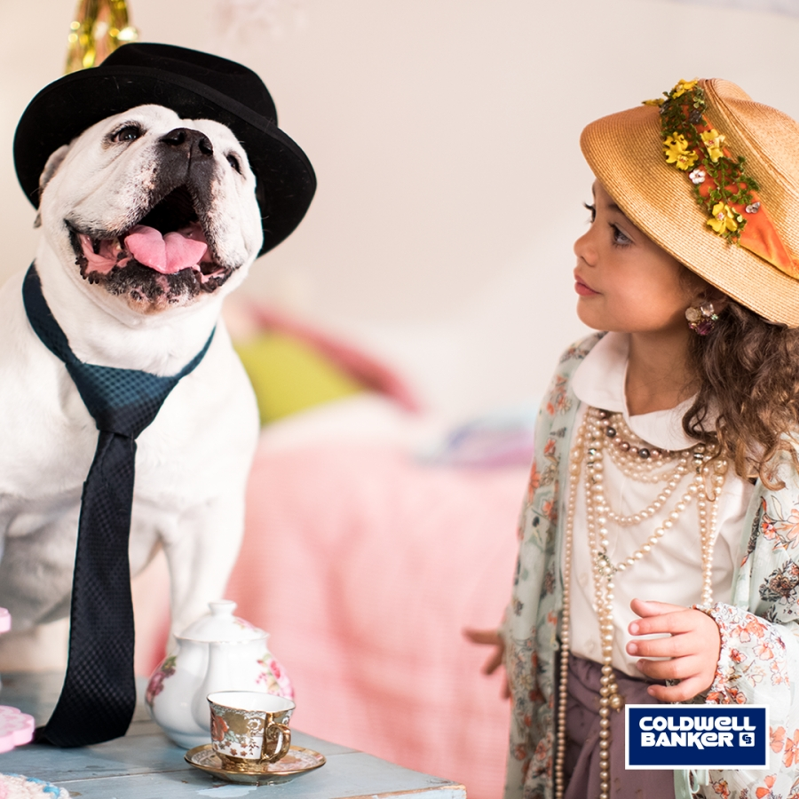 Coldwell Banker Helps Find Forever Homes For Dogs During National Pet Adoption Weekend (Conn. and Westchester County, N.Y.)